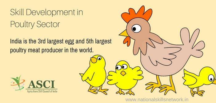 Poultry skill development India. jpg