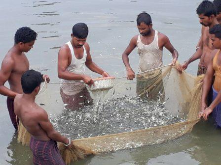 Fisheries skills blue revolution 1