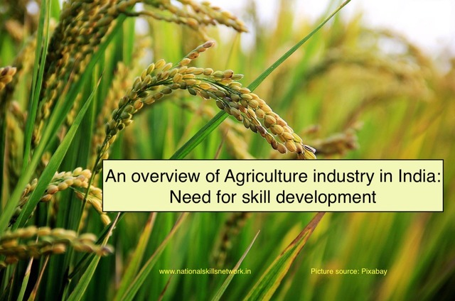 An overview of Agriculture industry in India Need for skill development